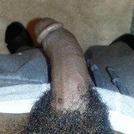 blackdick