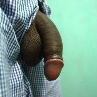 Raj SuK