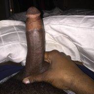 Bjamal89